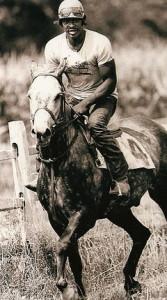 DA_Horse